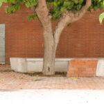 Carrer de l'Esport, El Morell